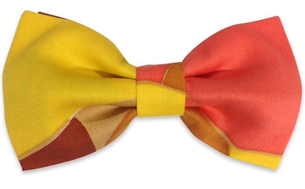 multicolor bow tie